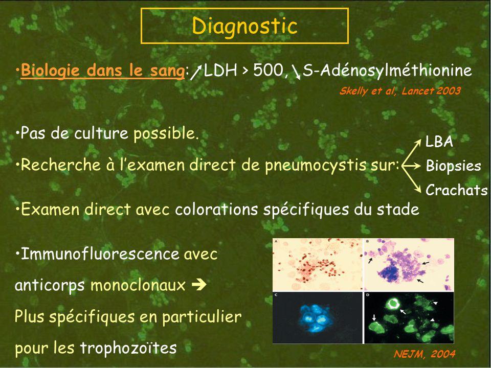 Diagnostic Biologie dans le sang: LDH > 500, S-Adénosylméthionine