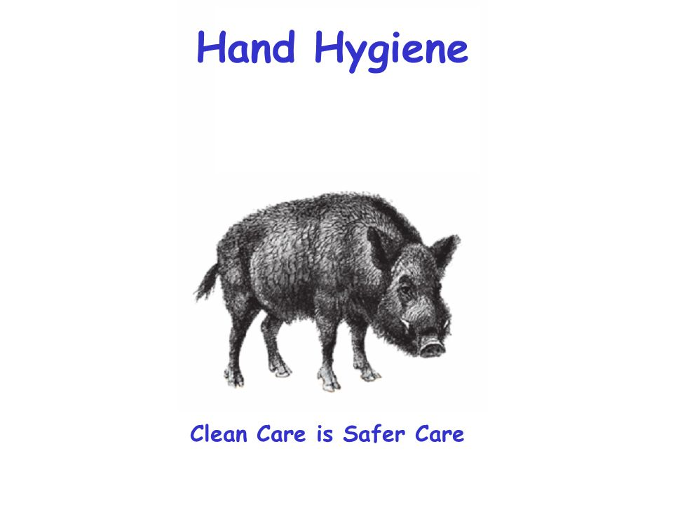 Hand Hygiene Clean Care is Safer Care