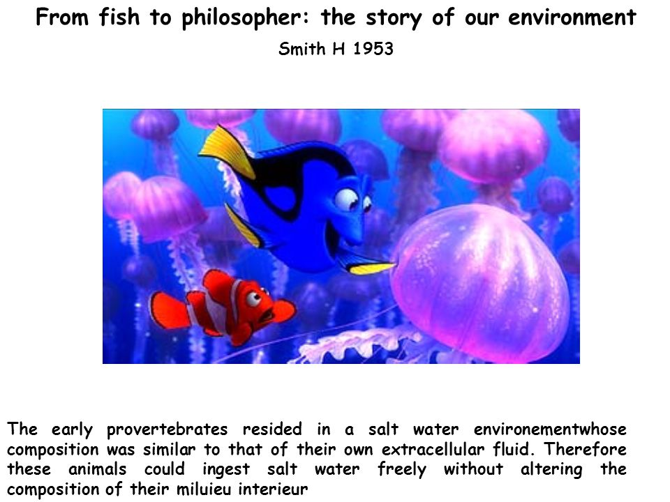 From fish to philosopher: the story of our environment