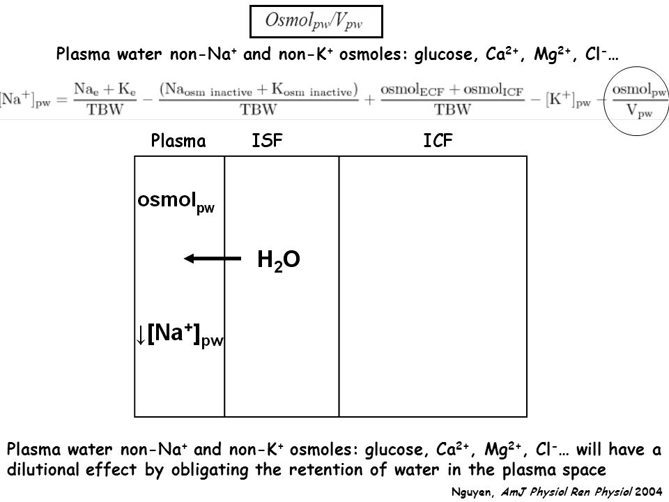 Plasma water non-Na+ and non-K+ osmoles: glucose, Ca2+, Mg2+, Cl-…