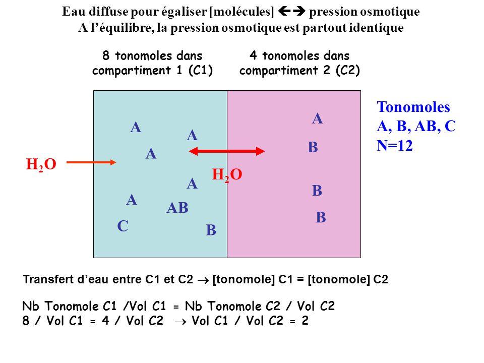 Tonomoles A, B, AB, C A N=12 A H2O H2O AB B C B