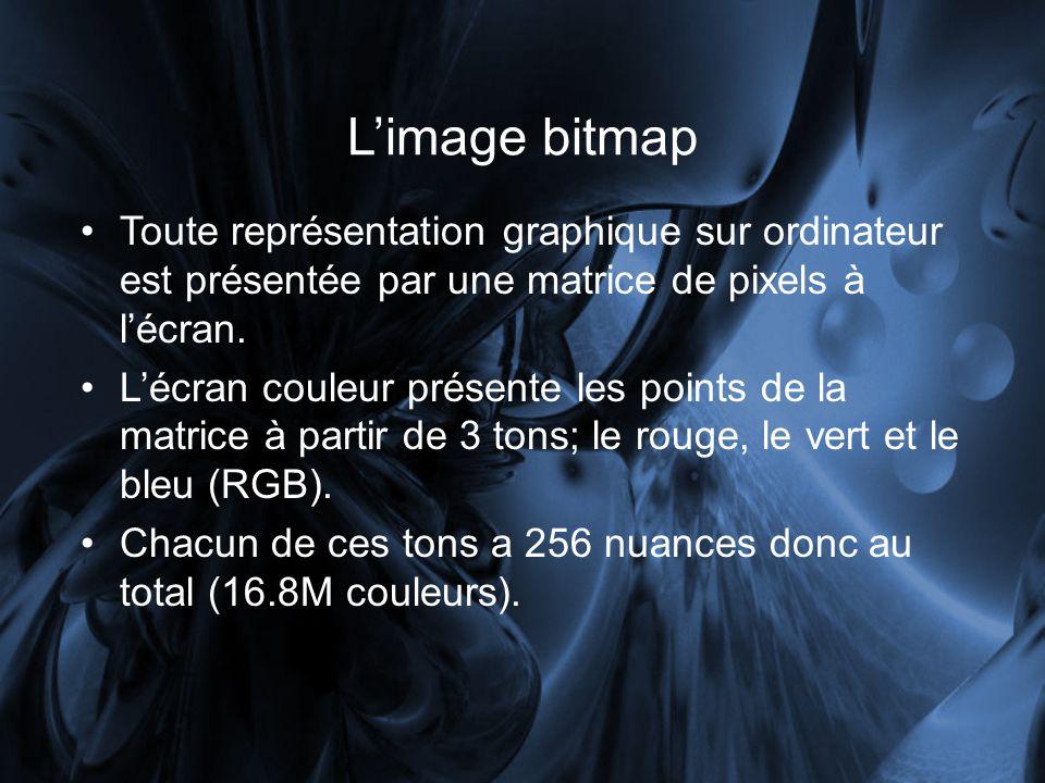 L'image bitmap Toute représentation graphique sur ordinateur est présentée par une matrice de pixels à l'écran.