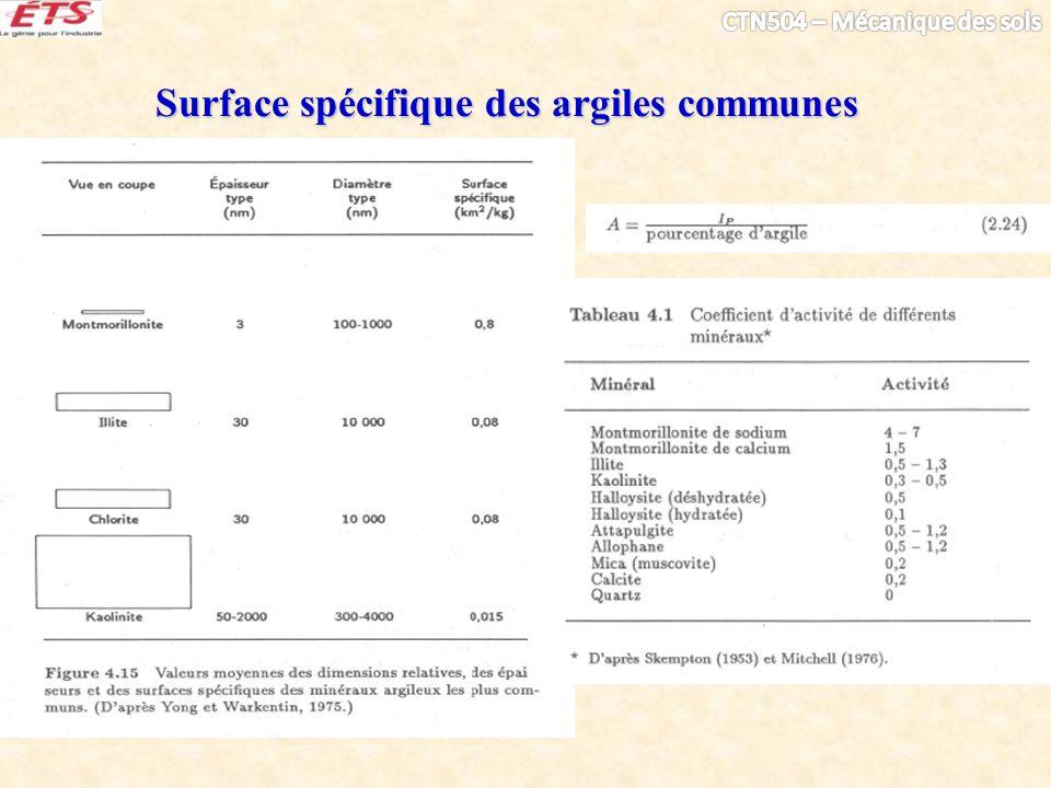 Surface spécifique des argiles communes