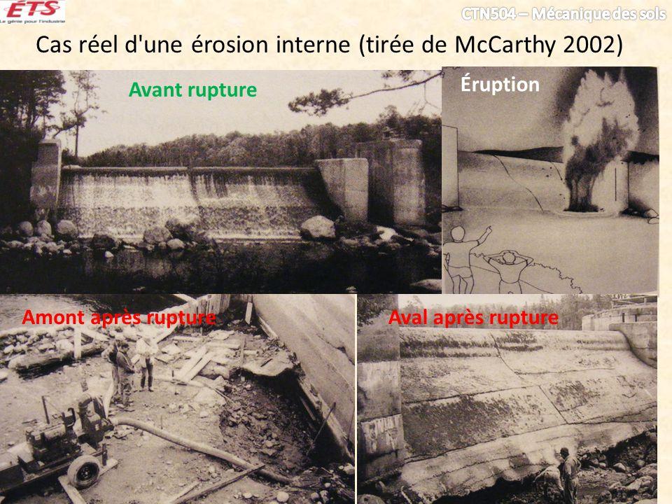 Cas réel d une érosion interne (tirée de McCarthy 2002)