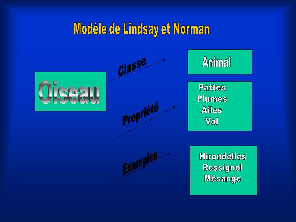 Modèle de Lindsay et Norman