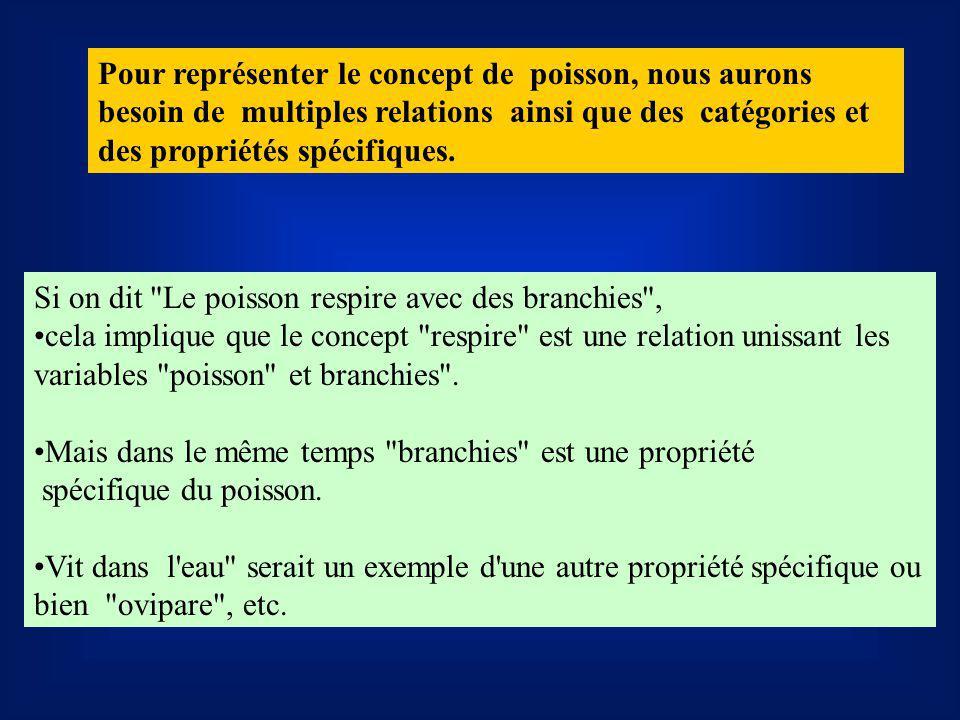 Pour représenter le concept de poisson, nous aurons besoin de multiples relations ainsi que des catégories et des propriétés spécifiques.