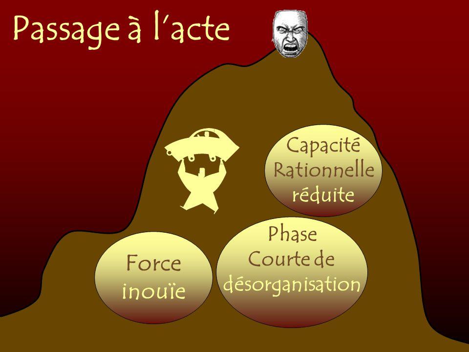 Passage à l'acte Force inouïe Capacité Rationnelle réduite Phase