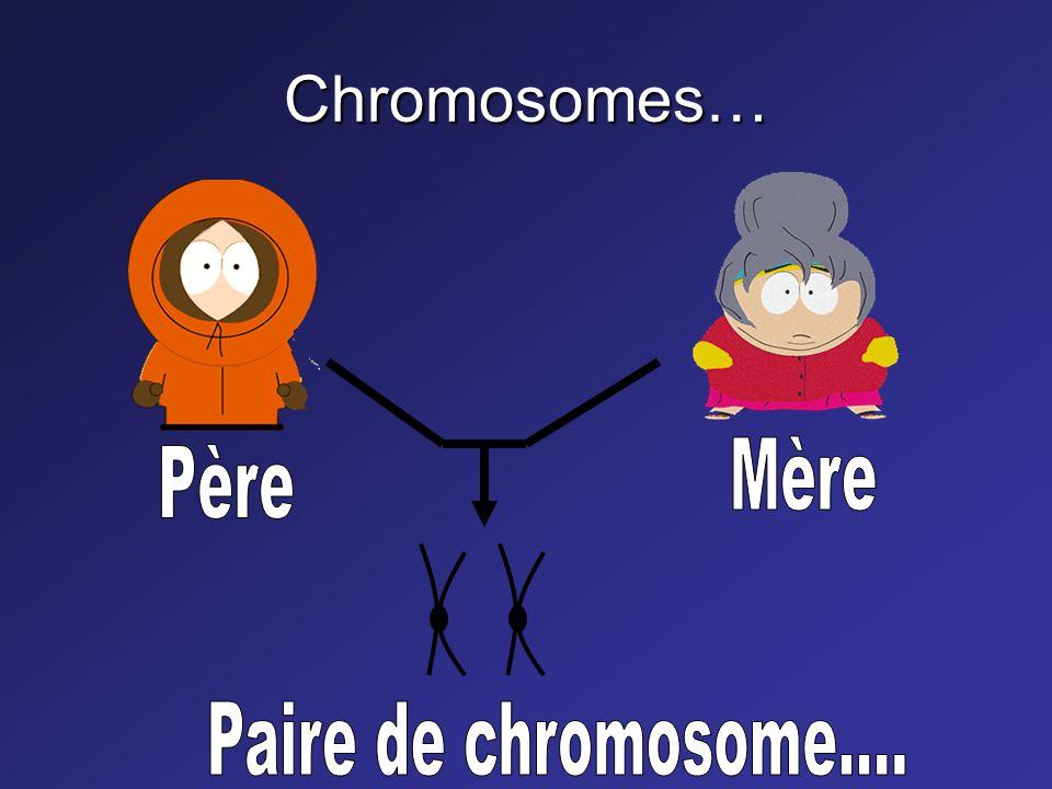 Chromosomes… Mère Père Paire de chromosome....