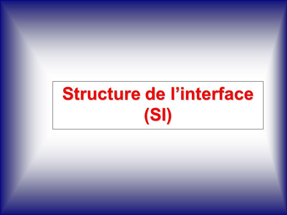 Structure de l'interface (SI)