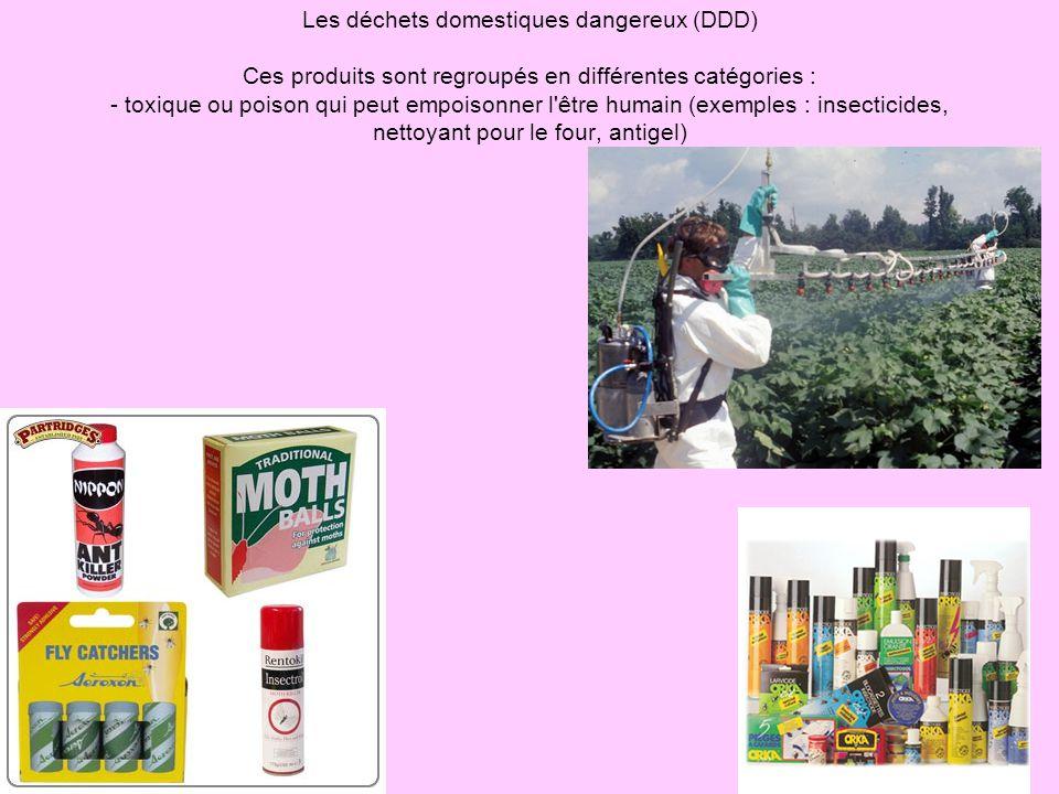 Les déchets domestiques dangereux (DDD) Ces produits sont regroupés en différentes catégories : - toxique ou poison qui peut empoisonner l être humain (exemples : insecticides, nettoyant pour le four, antigel)