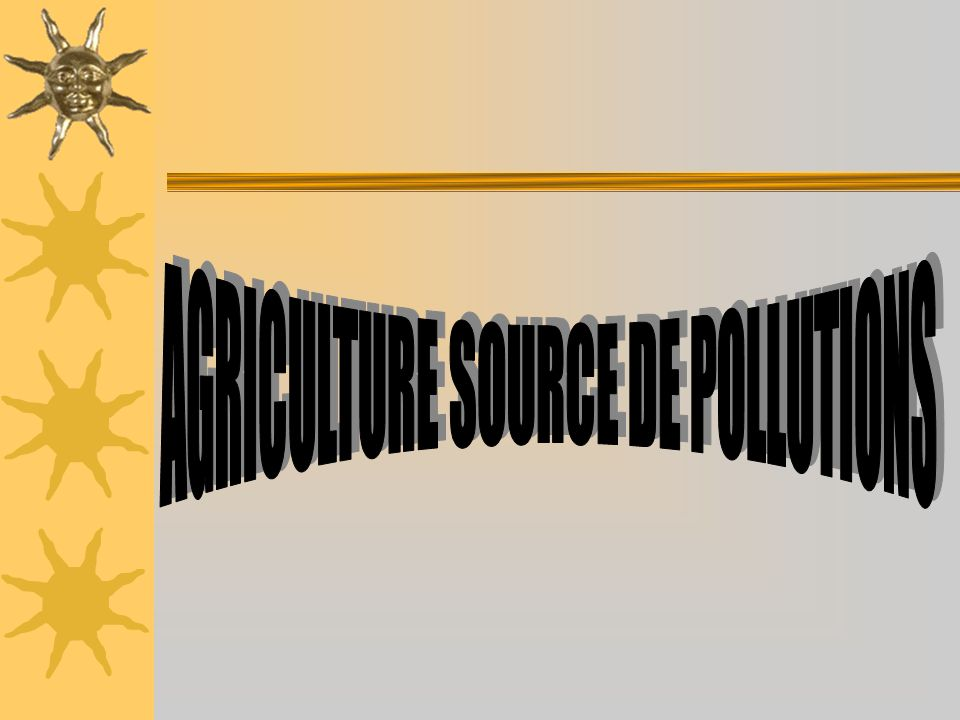 AGRICULTURE SOURCE DE POLLUTIONS
