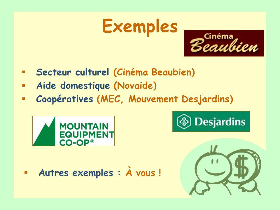 Exemples Secteur culturel (Cinéma Beaubien) Aide domestique (Novaide)