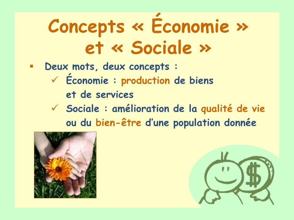 Concepts « Économie » et « Sociale »