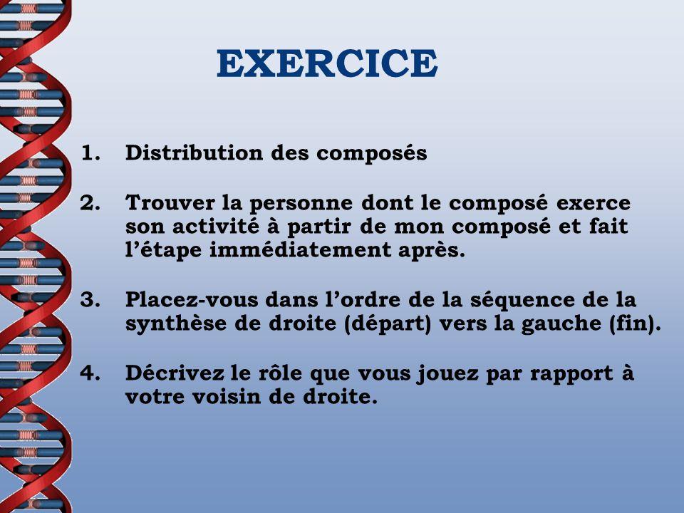 EXERCICE 1. Distribution des composés
