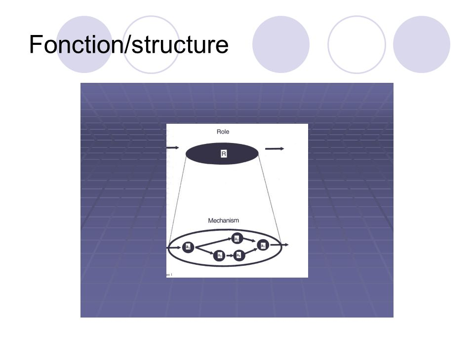 Fonction/structure