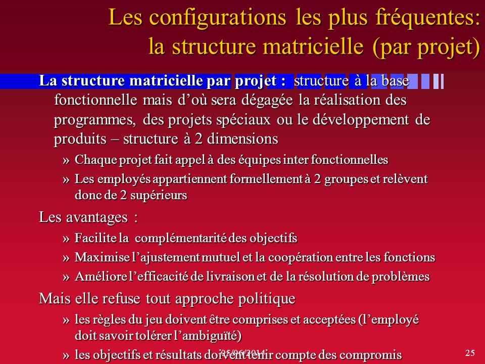 Les configurations les plus fréquentes: la structure matricielle (par projet)