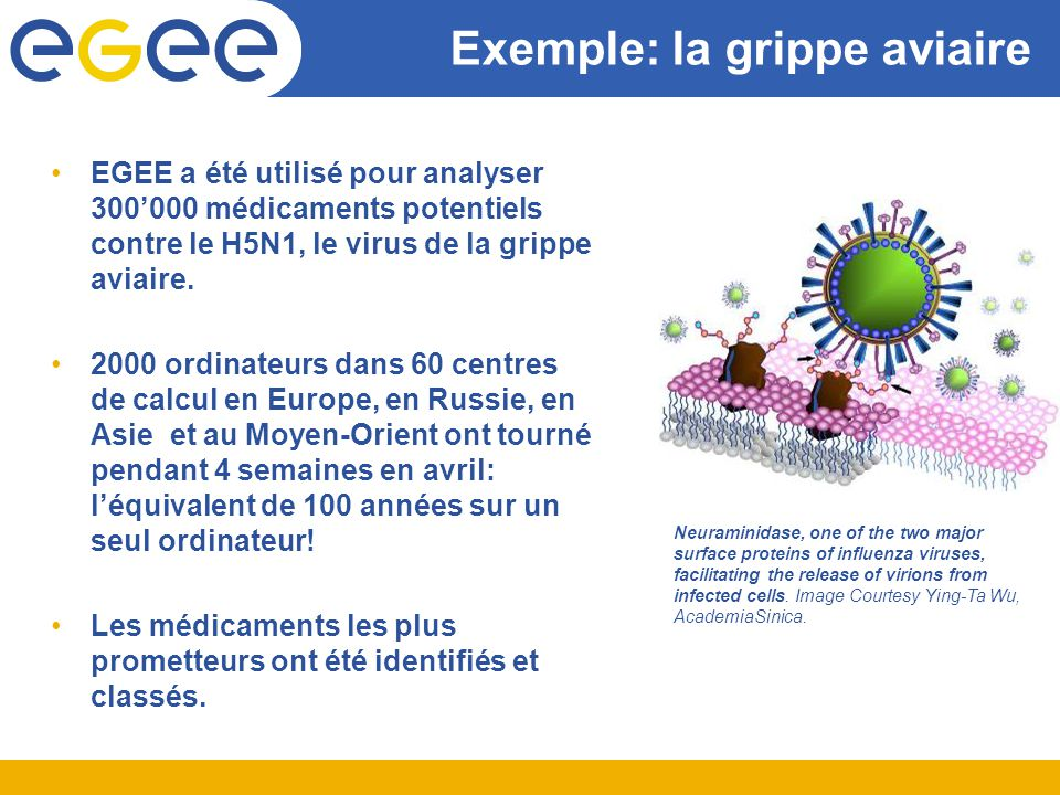 Exemple: la grippe aviaire