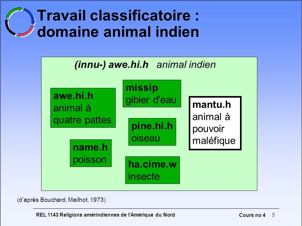 Travail classificatoire : domaine animal indien