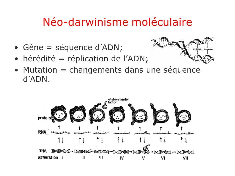 Néo-darwinisme moléculaire