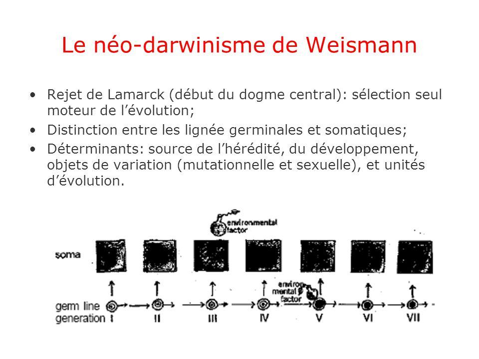 Le néo-darwinisme de Weismann