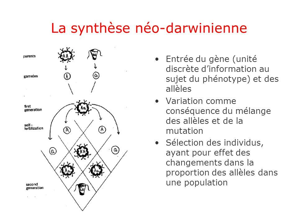 La synthèse néo-darwinienne