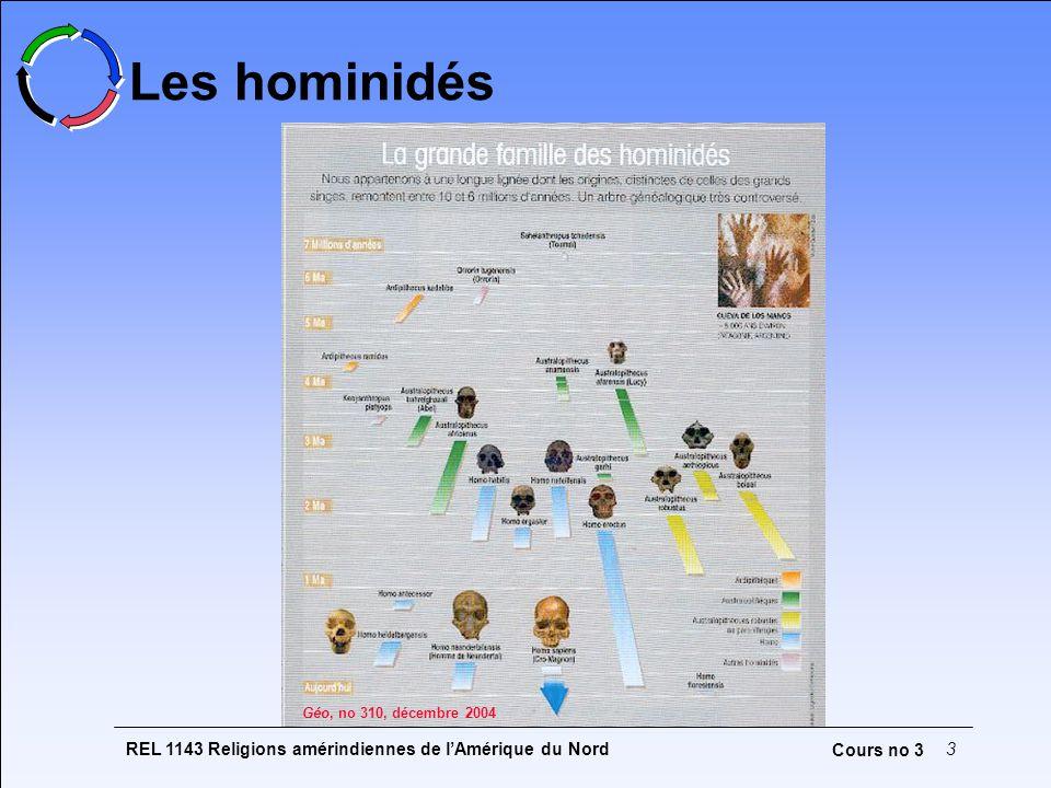 Les hominidés Deux théories sur l'origine de Homo sapiens :