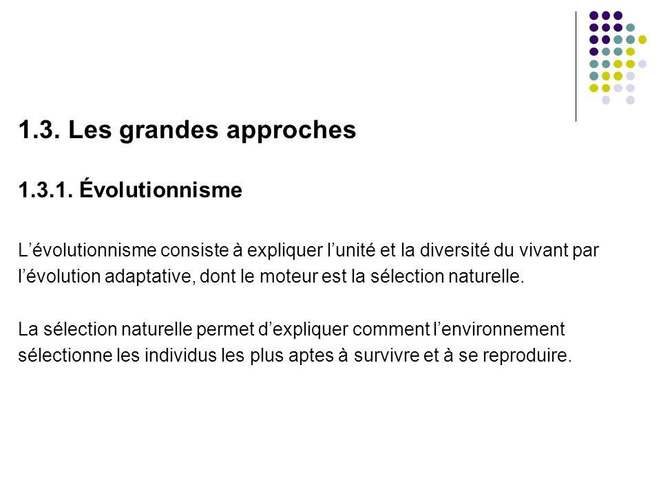 1.3. Les grandes approches 1.3.1. Évolutionnisme