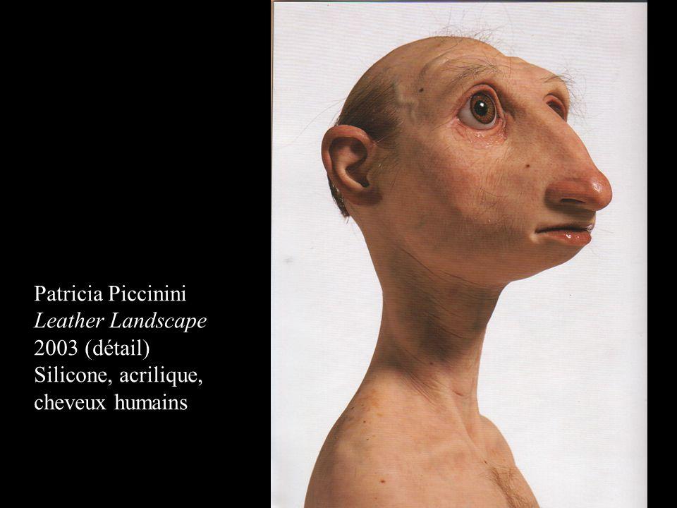 Patricia Piccinini Leather Landscape 2003 (détail) Silicone, acrilique, cheveux humains