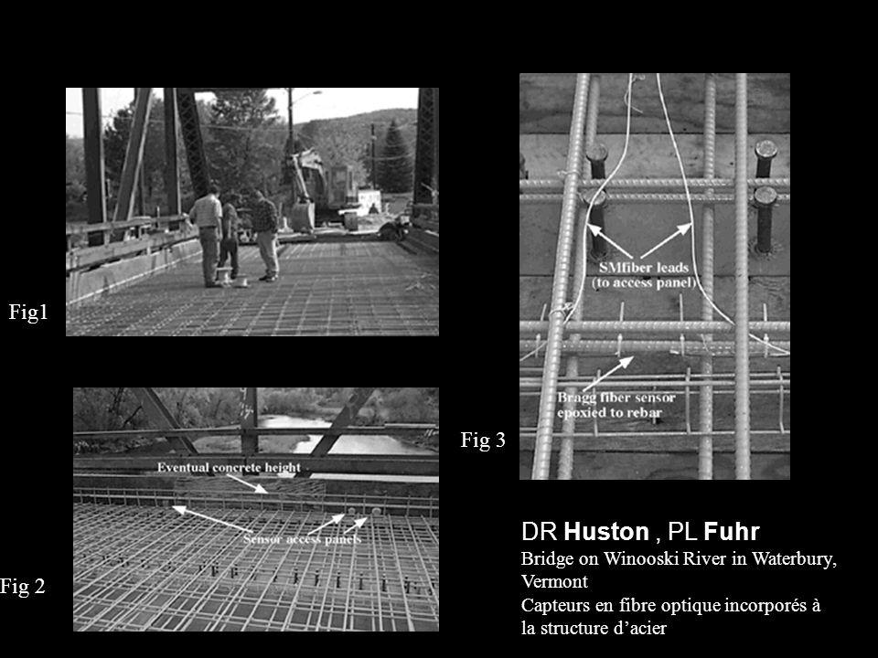 DR Huston , PL Fuhr Fig1 Fig 3 Fig 2