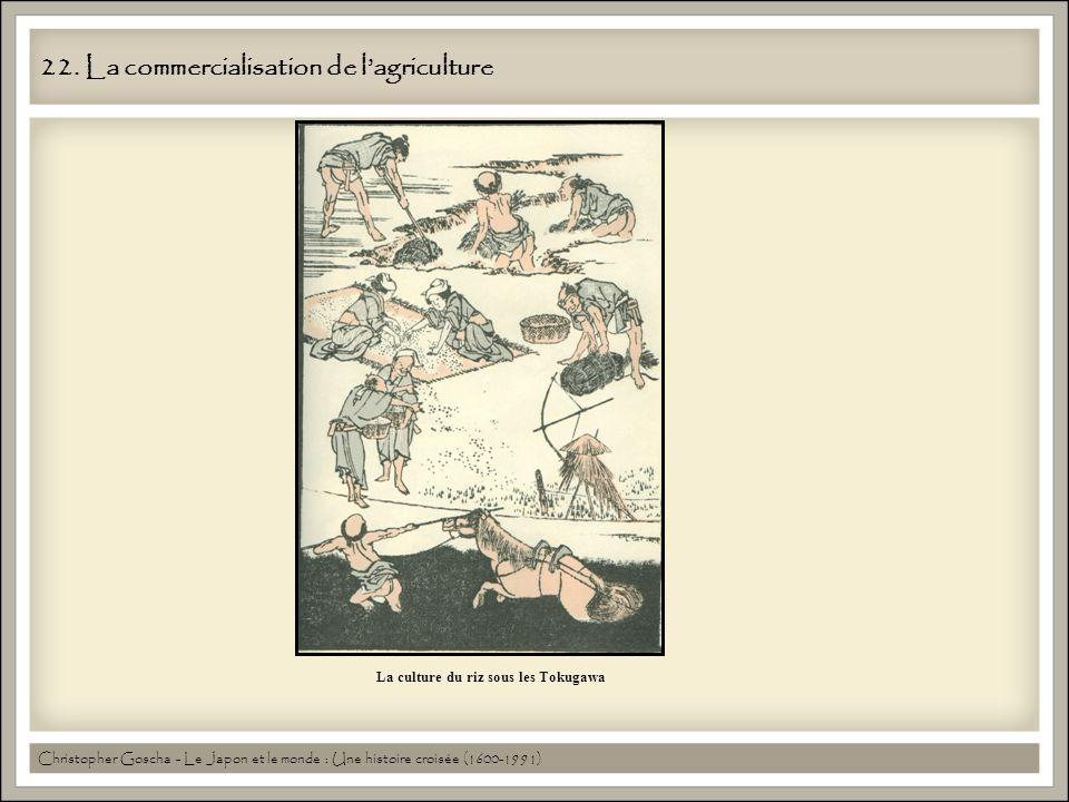 22. La commercialisation de l'agriculture