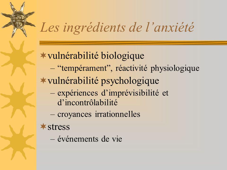 Les ingrédients de l'anxiété