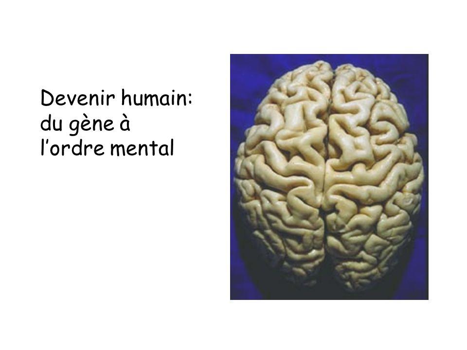 Devenir humain: du gène à l'ordre mental