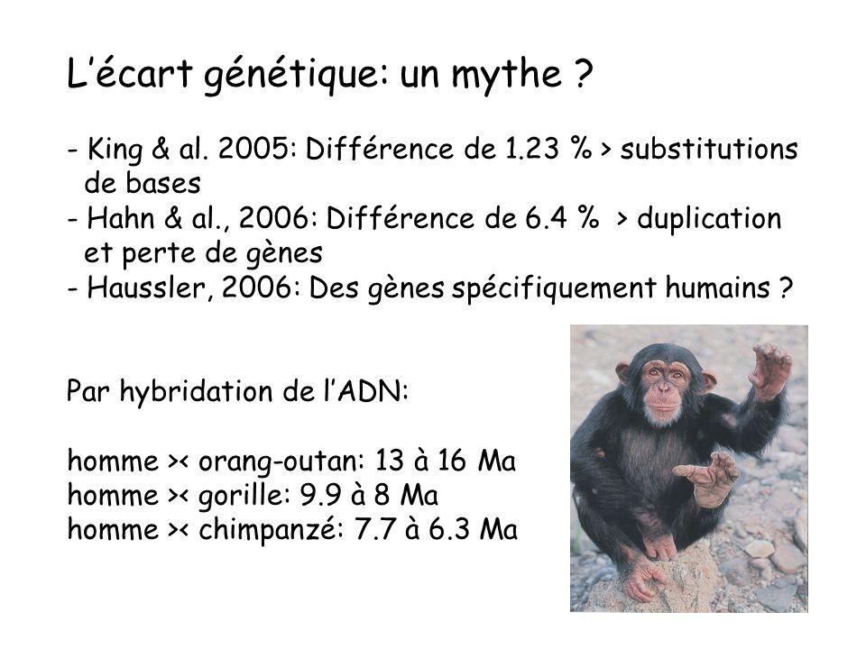 L'écart génétique: un mythe