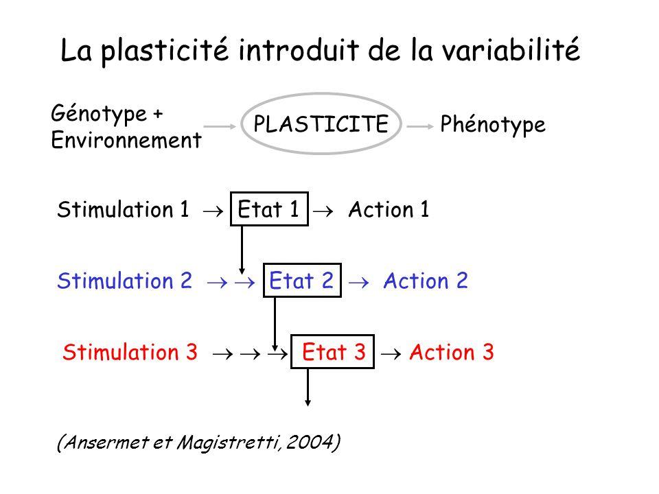 La plasticité introduit de la variabilité