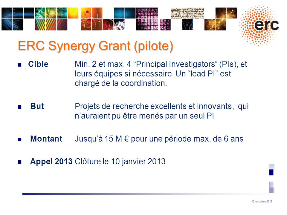 ERC Synergy Grant (pilote)