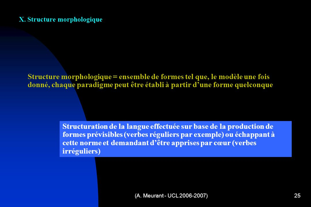 X. Structure morphologique