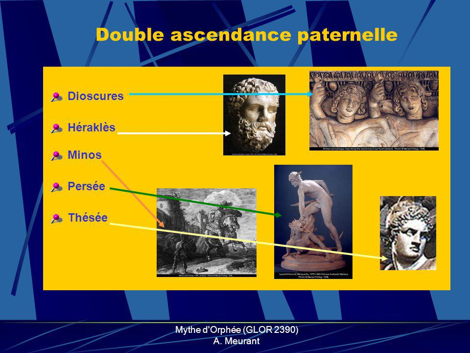Double ascendance paternelle
