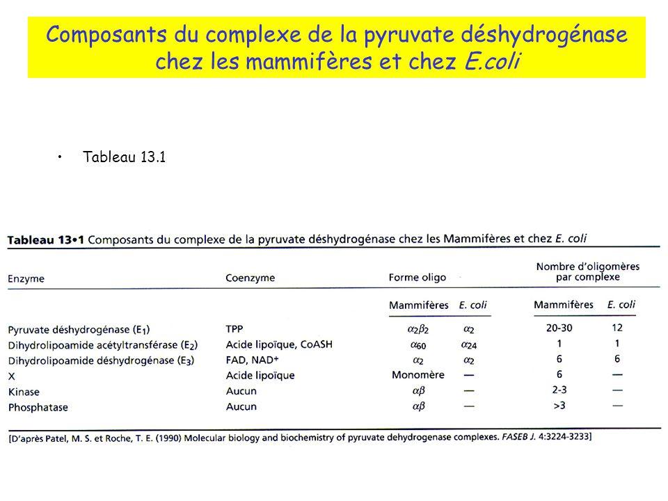 Composants du complexe de la pyruvate déshydrogénase chez les mammifères et chez E.coli
