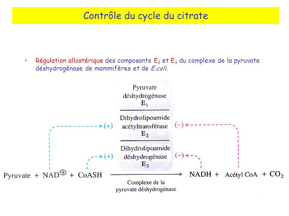 Contrôle du cycle du citrate