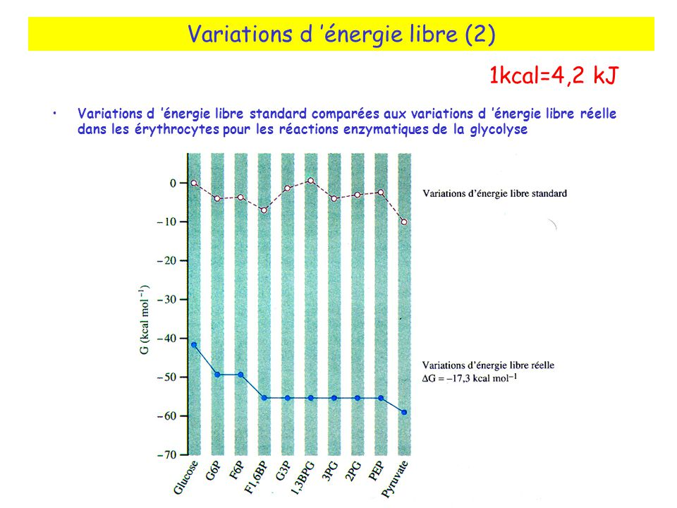 Variations d 'énergie libre (2)