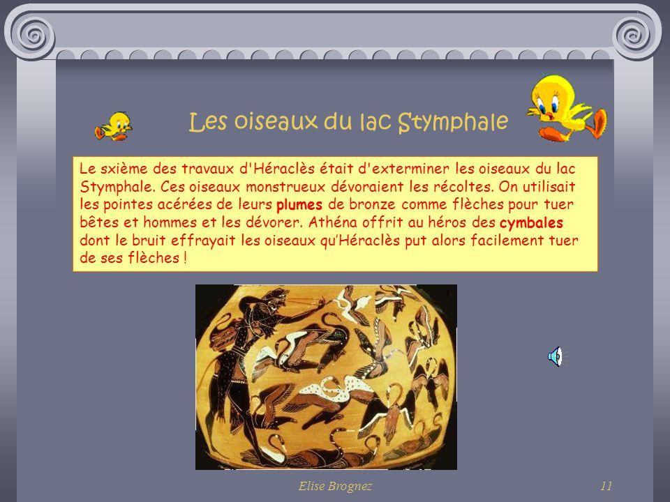 Les oiseaux du lac Stymphale