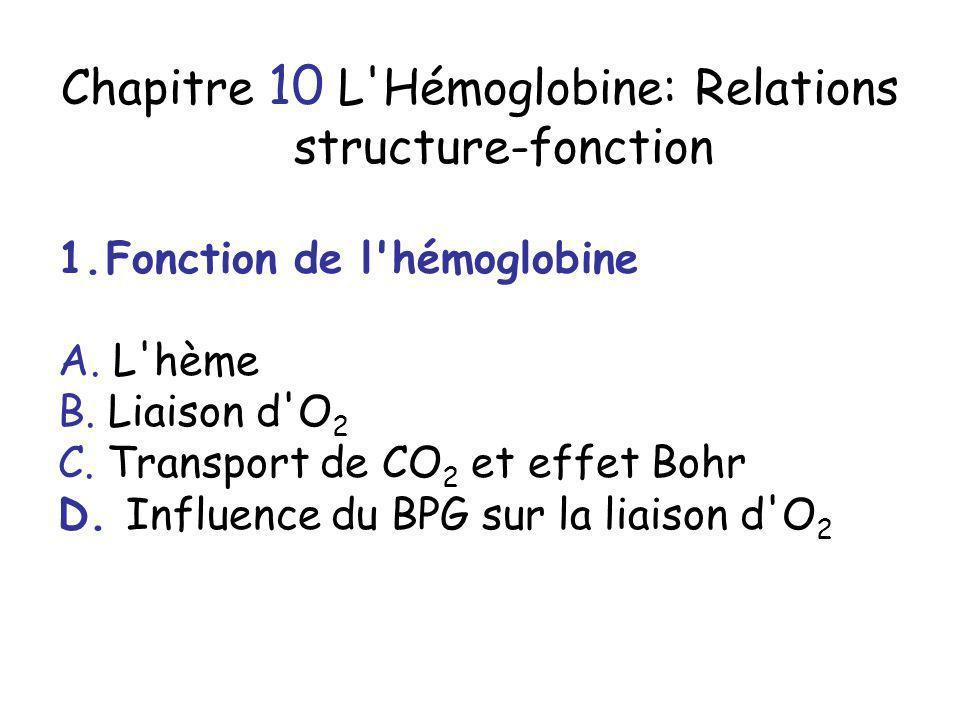 Chapitre 10 L Hémoglobine: Relations structure-fonction