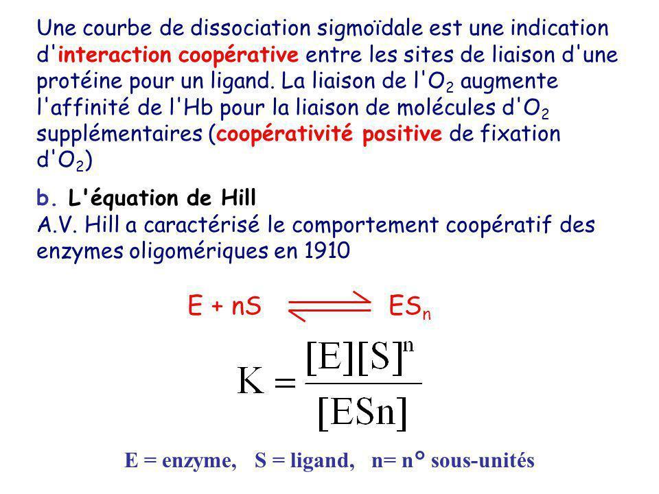 E = enzyme, S = ligand, n= n° sous-unités