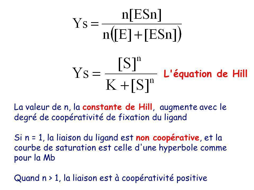 L équation de Hill La valeur de n, la constante de Hill, augmente avec le degré de coopérativité de fixation du ligand.