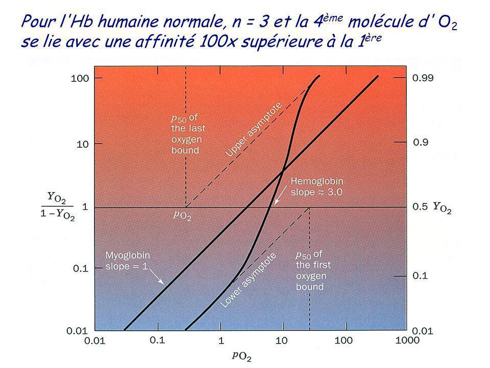 Pour l Hb humaine normale, n = 3 et la 4ème molécule d O2 se lie avec une affinité 100x supérieure à la 1ère