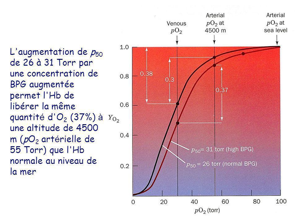 L augmentation de p50 de 26 à 31 Torr par une concentration de BPG augmentée permet l Hb de libérer la même quantité d O2 (37%) à une altitude de 4500 m (pO2 artérielle de 55 Torr) que l Hb normale au niveau de la mer