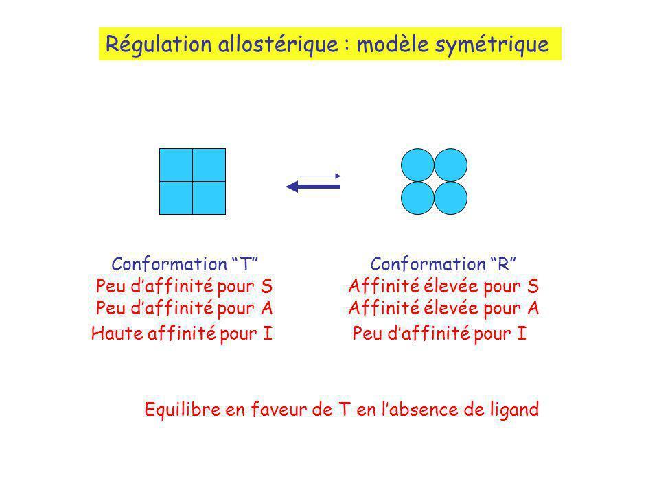 Régulation allostérique : modèle symétrique