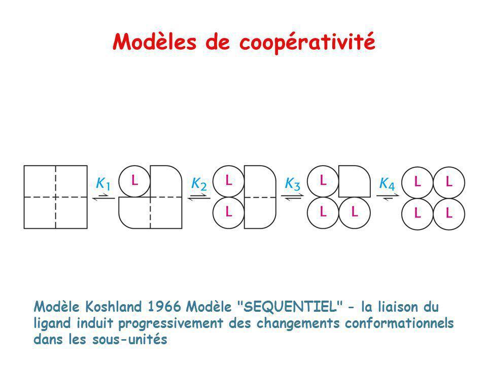 Modèles de coopérativité