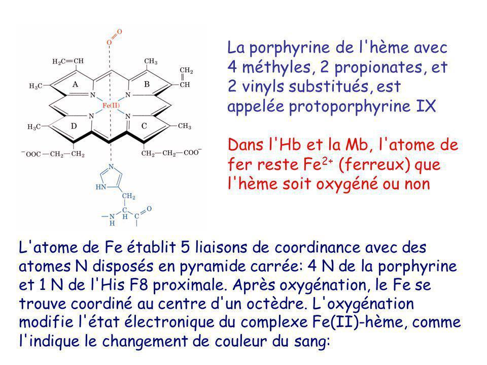 La porphyrine de l hème avec 4 méthyles, 2 propionates, et 2 vinyls substitués, est appelée protoporphyrine IX
