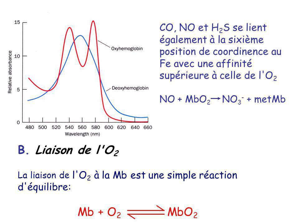 CO, NO et H2S se lient également à la sixième position de coordinence au Fe avec une affinité supérieure à celle de l O2